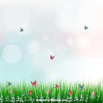 Fondo con hierba y mariposas