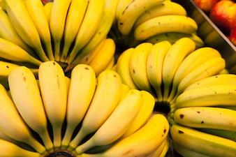 Bananas en racimo