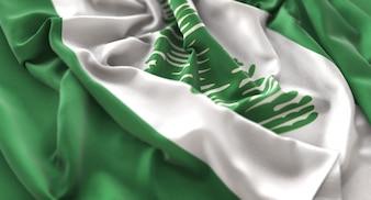 Bandera de Isla Norfolk Ruffled Bellamente Agitando Macro Foto de primer plano
