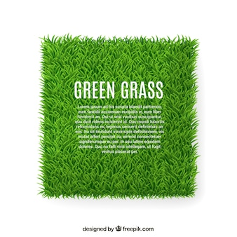 Banner de la hierba verde