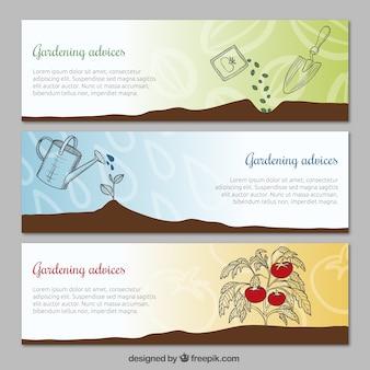 Banners de consejos de jardinería