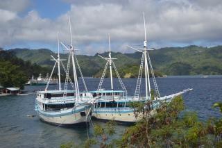 barcos gemelos