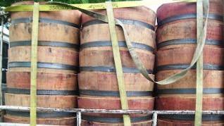 barriles de vino, pintura
