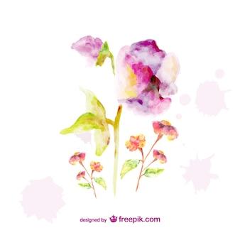 Hermosas flores pintadas con acuarela