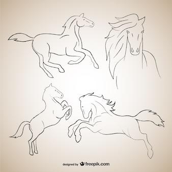 Bocetos delineados de caballos
