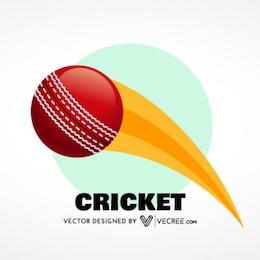 Bola de Críquet de movimiento