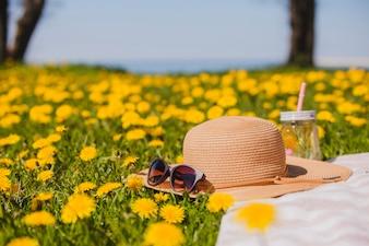 Bonito sombrero de verano con gafas de sol en el césped