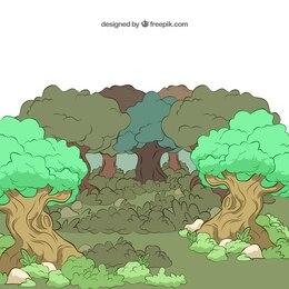Bosque ilustrado