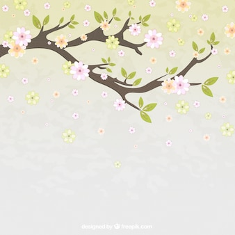 Rama con flores hermosas