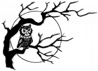 búho en el árbol