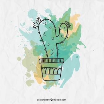 Cactus de acuarela