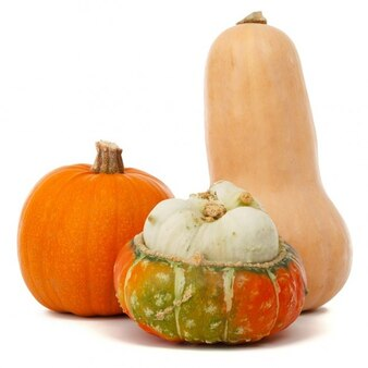 calabaza de Halloween alimentos otoño fresco cosecha de otoño