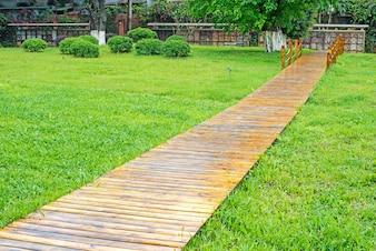 Camino de madera y césped verde