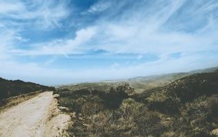 Camino estrecho
