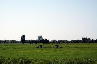 Campos agrícolas holandeses, los campos