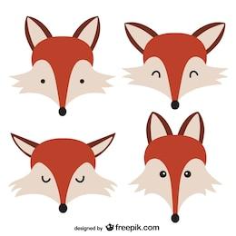 Caras de zorros