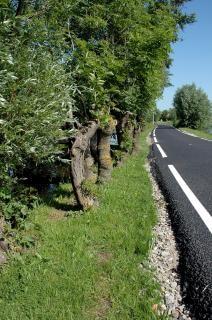carreteras, campos agrícolas