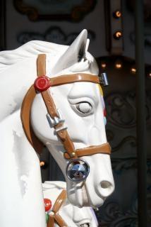 carrusel de caballo -1