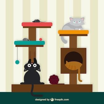 Casa del gato