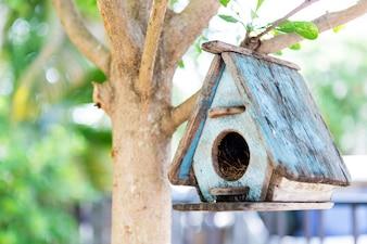 Casa del pájaro en un árbol