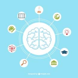 Cerebro con iconos de educación
