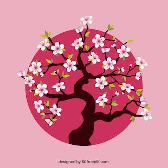 Cerezo sobre punto rosa