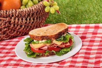 Cesta de picnic y sándwich tostado de jamón y queso