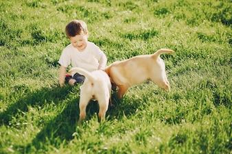 Chico con perros