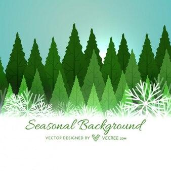 Bosque de la Navidad en invierno