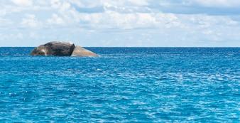 Cielo azul con el mar y la roca
