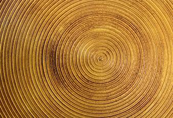 Círculo de acero de oro de textura para el fondo