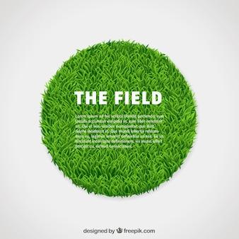 Círculo de hierba verde