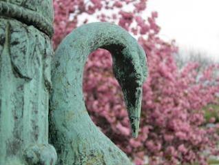 cisne escultura