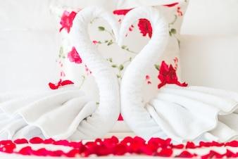 Cisnes de toallas blancas