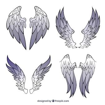 Colección de alas