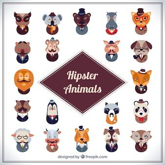 Colección de animales hipster
