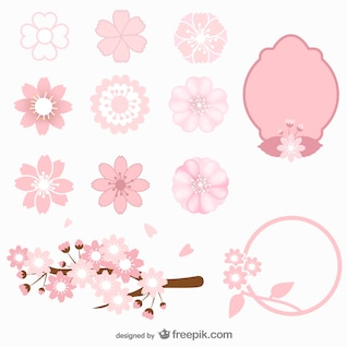 Colección de flores de cerezo