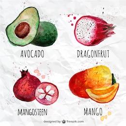 Colección de frutas de acuarela
