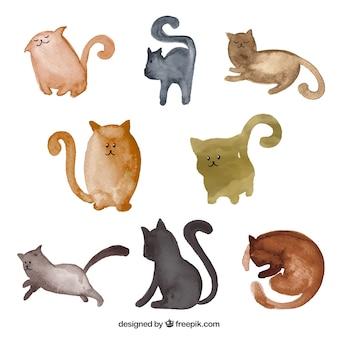 Colección de gatos en estilo de acuarela