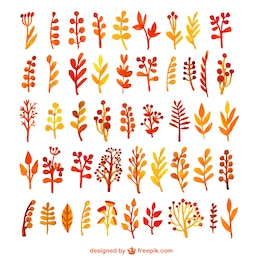 Colección de hojas de acuarela