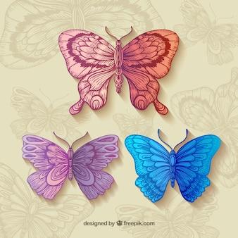 Colección de mariposas hermosas