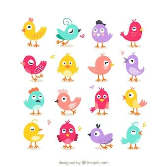 Colección de pájaros lindos