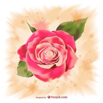 Rosa de acuarela