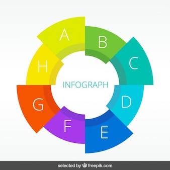 Colorido círculo infografía sectorizado