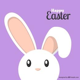 Conejo de Pascua precioso