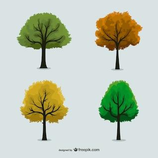 Conjunto de árboles en diferentes estaciones
