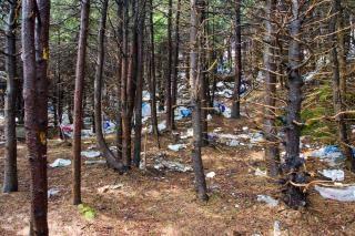 Contaminación del montón