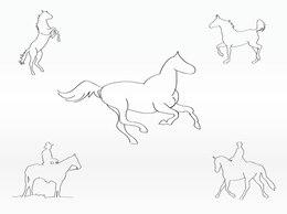 Contornos de caballos