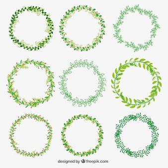 Coronas de flores verdes