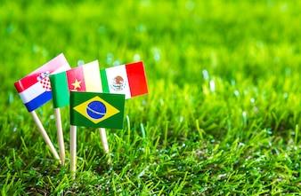 Corte del papel de las banderas en el césped para el campeonato de fútbol 2014